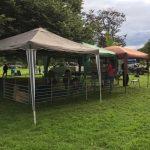 Farm Tent Precious Pets Cavan Farm