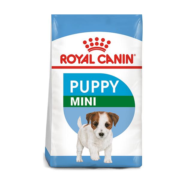 Royal Canin Mini Junior 8kg & 2kg Precious Pets Cavan